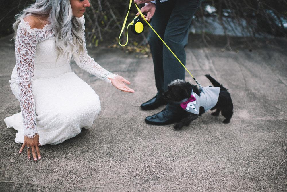 Poconos Wedding Photographer - Swackhamer-418.jpg
