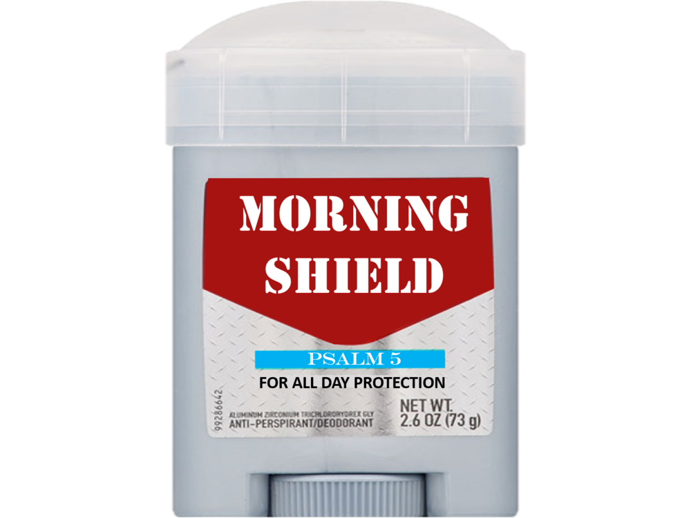 MORNING SHIELD.png