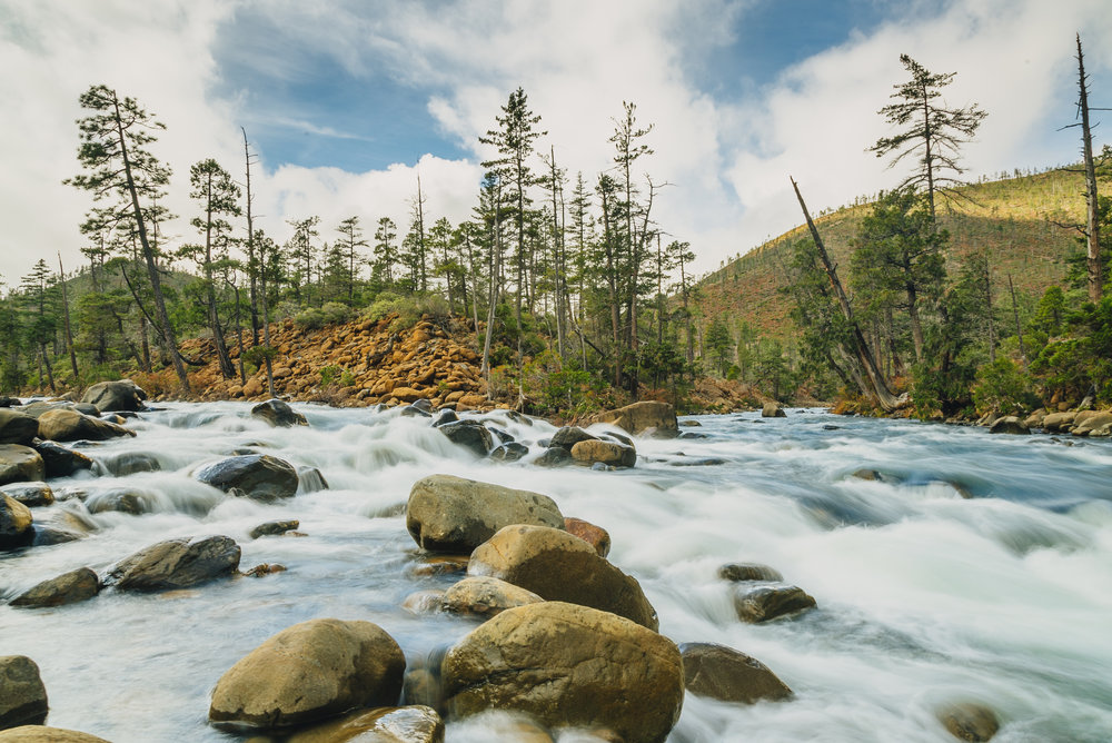 The beautiful and endangered Rough and Ready Creek, tributary to the Illinois and Rogue Rivers of southwest Oregon. Photo by Nate Wilson