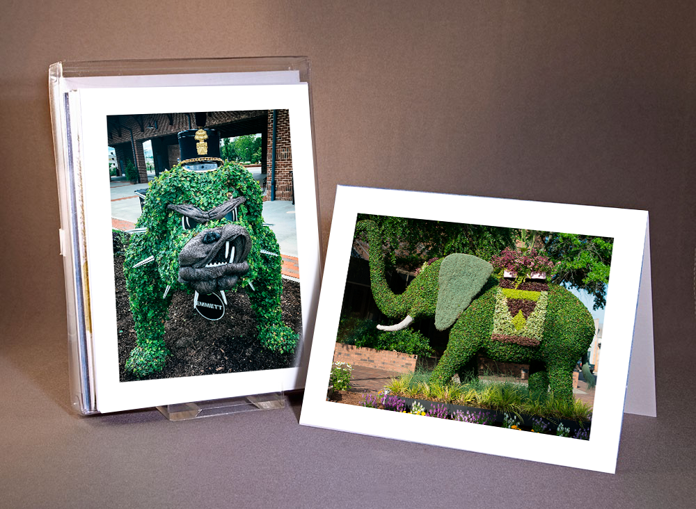 Topiary Note Cards - Love the SC Festival of Flower topiaries? Share their beauty with friends near & far with our note cards.For the die hard sports fans we have sets with our Citadel Bulldog, Clemson Tiger, Lander Bearcat, and USC Gamecocks.$5 Pack of 6(assorted topiaries or mascot)