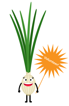 Onion_Gal.png