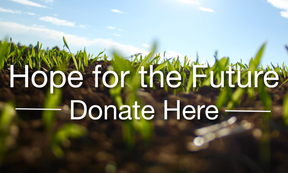 Hope for The Future Fund