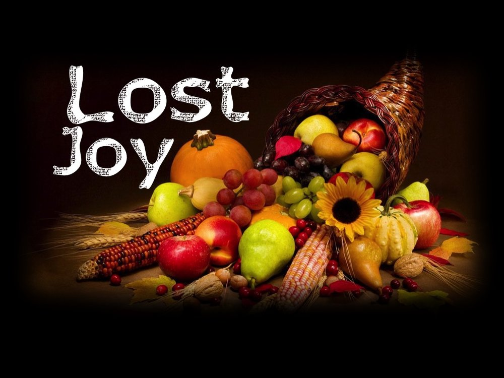 Lost Joy Sermon Series