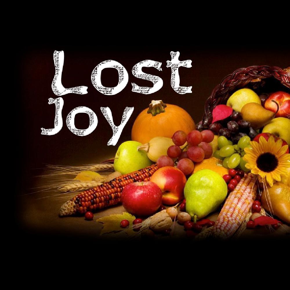 Lost Joy5/21/17
