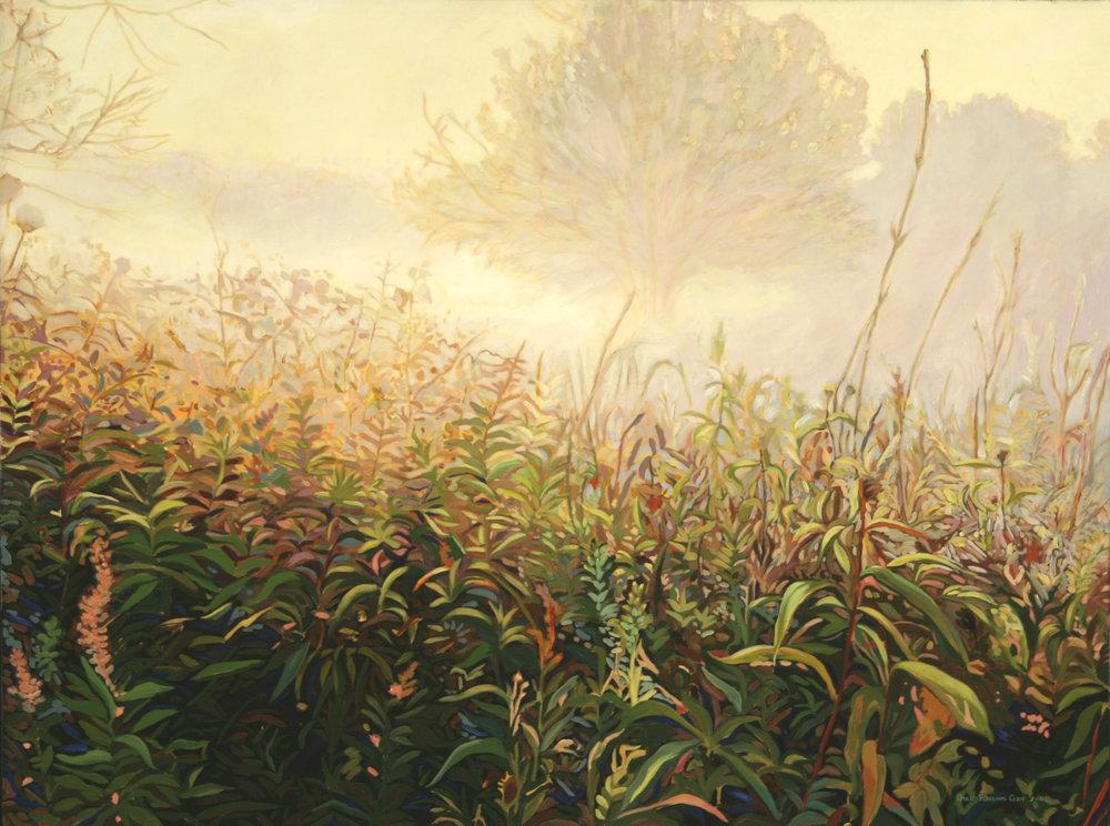 Morning Mist, 2005
