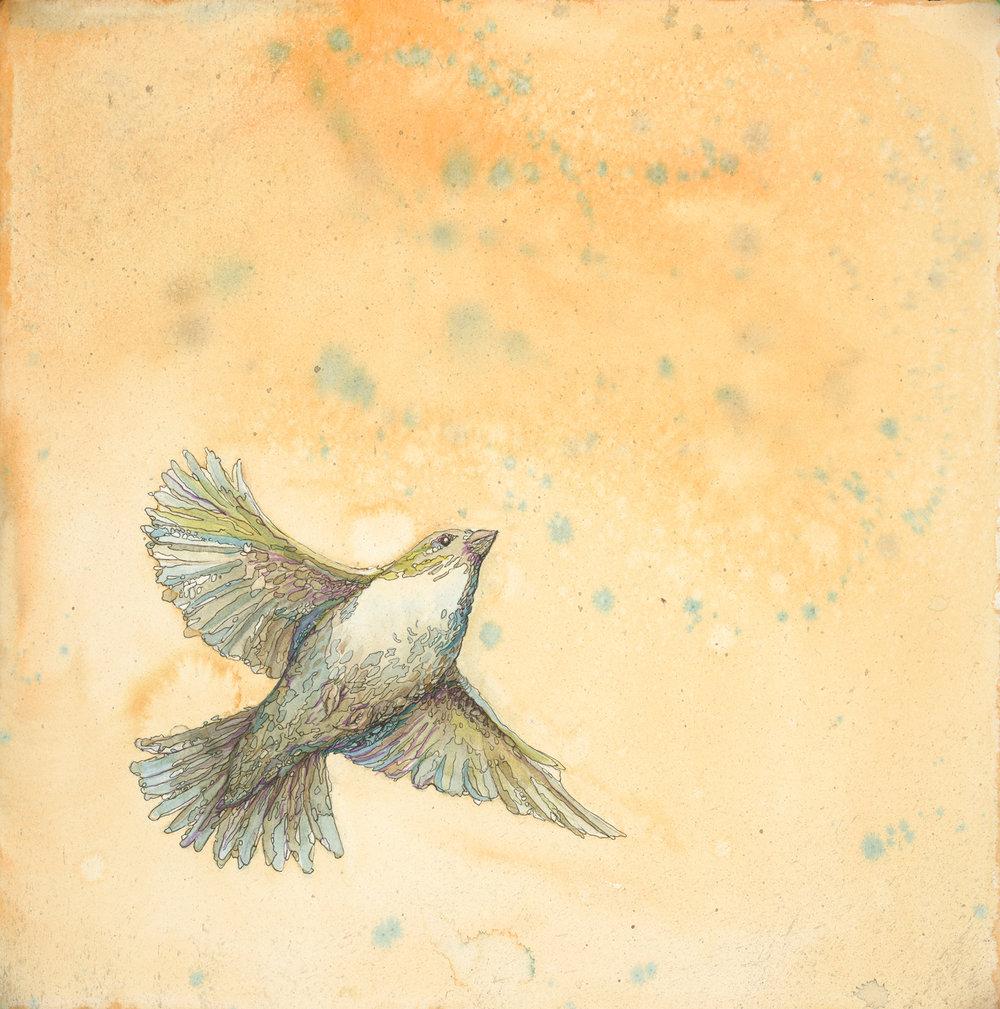 Bird II, 2012