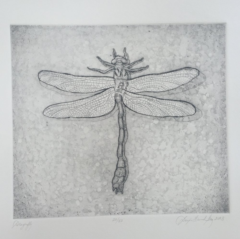 Dragonfly, 2003