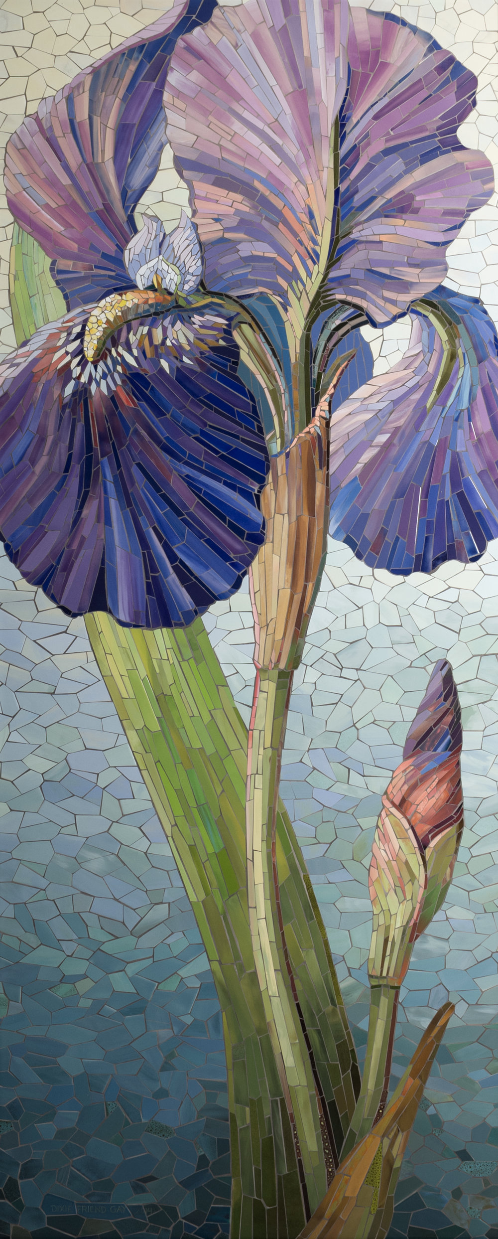 Iris by Hall.jpg