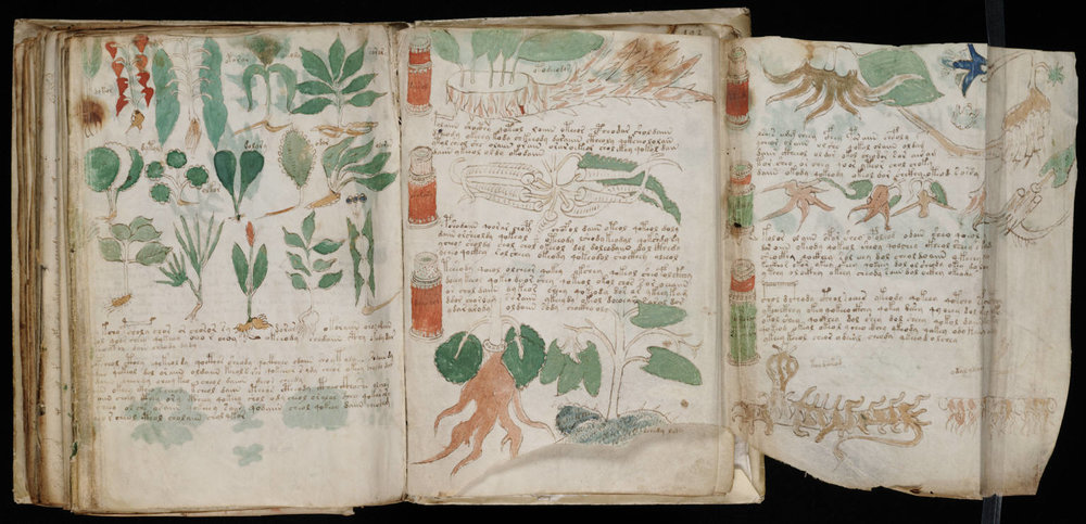 A page of the Voynich Manuscript, via Wikimedia Commons