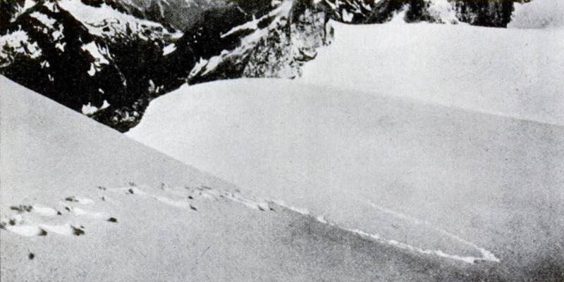 Alleged yeti footprints at the Himalayas photographed by Frank Smythe in 1937 and printed in  Popular Science , 1952, via  Wikimedia Commons