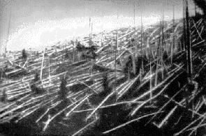 Fallen trees at Tunguska, 1927, via  Wikimedia Commons