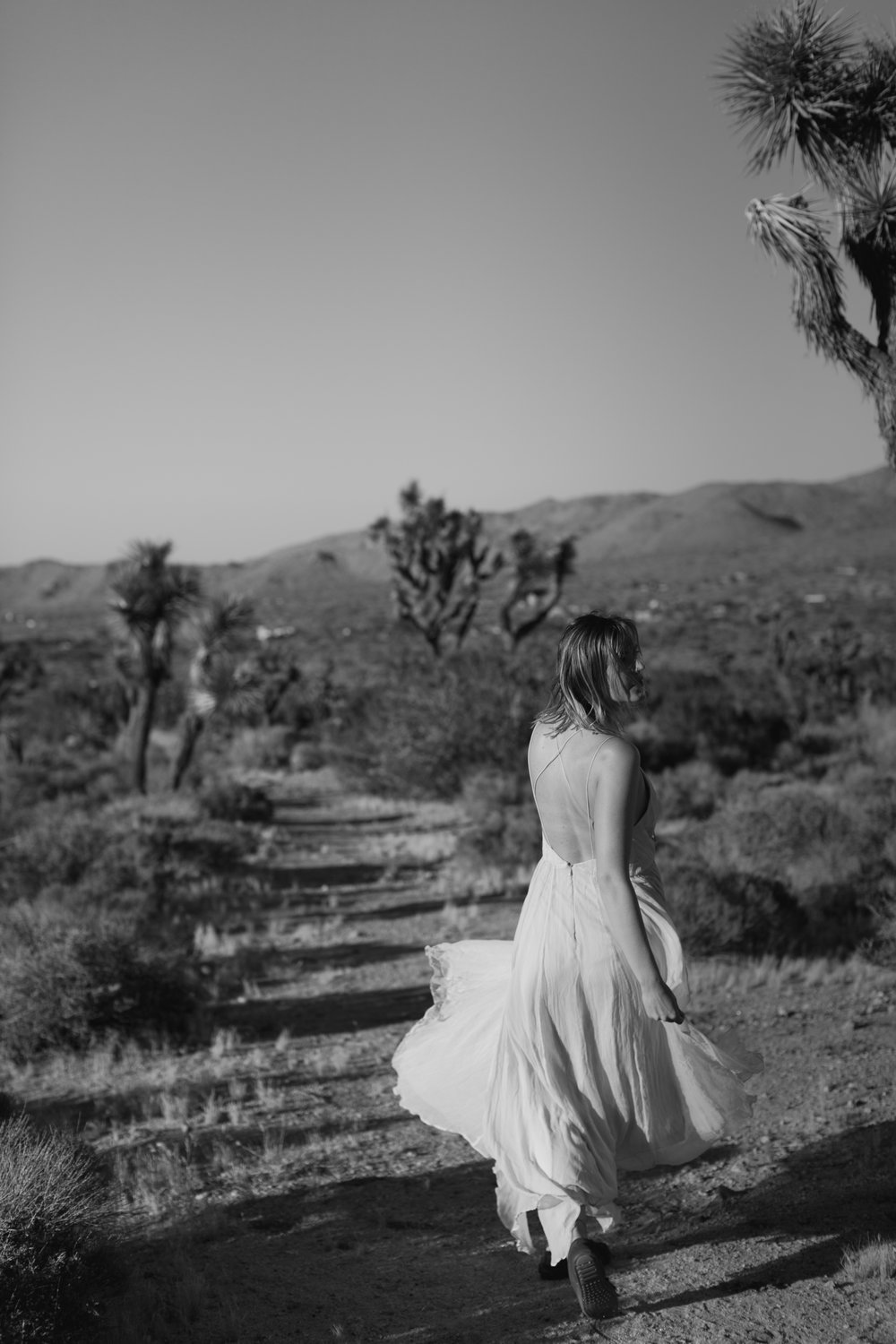 1075Shewanders.photography.joshua.tree.engagement-2318.jpg