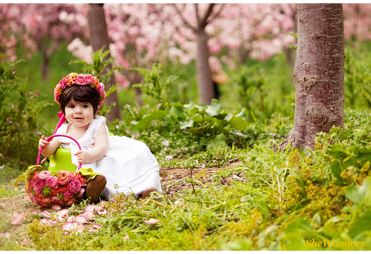little girl in green grass with basket of pink flowers, , San Diego Wedding Photography, SheWanders Wedding Photography