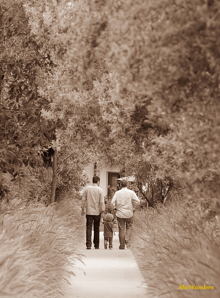 2 guys and boy walking, San Diego Wedding Photography, SheWanders Wedding Photography