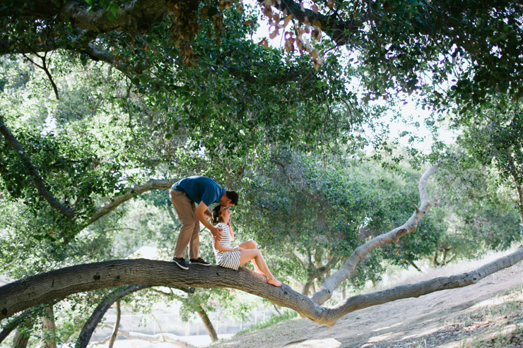 shewanders engagement, balboa park, sitting in a tree