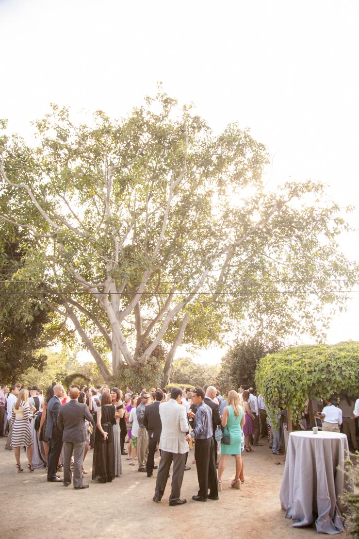 shewanders.san_.diego_.botanical.gardens185.jpg_.diego_.botanical.gardens185.jpg