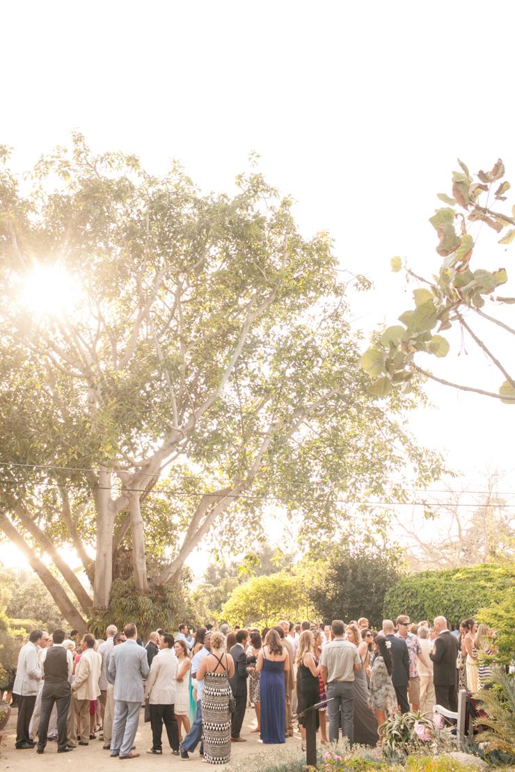 shewanders.san_.diego_.botanical.gardens188.jpg_.diego_.botanical.gardens188.jpg