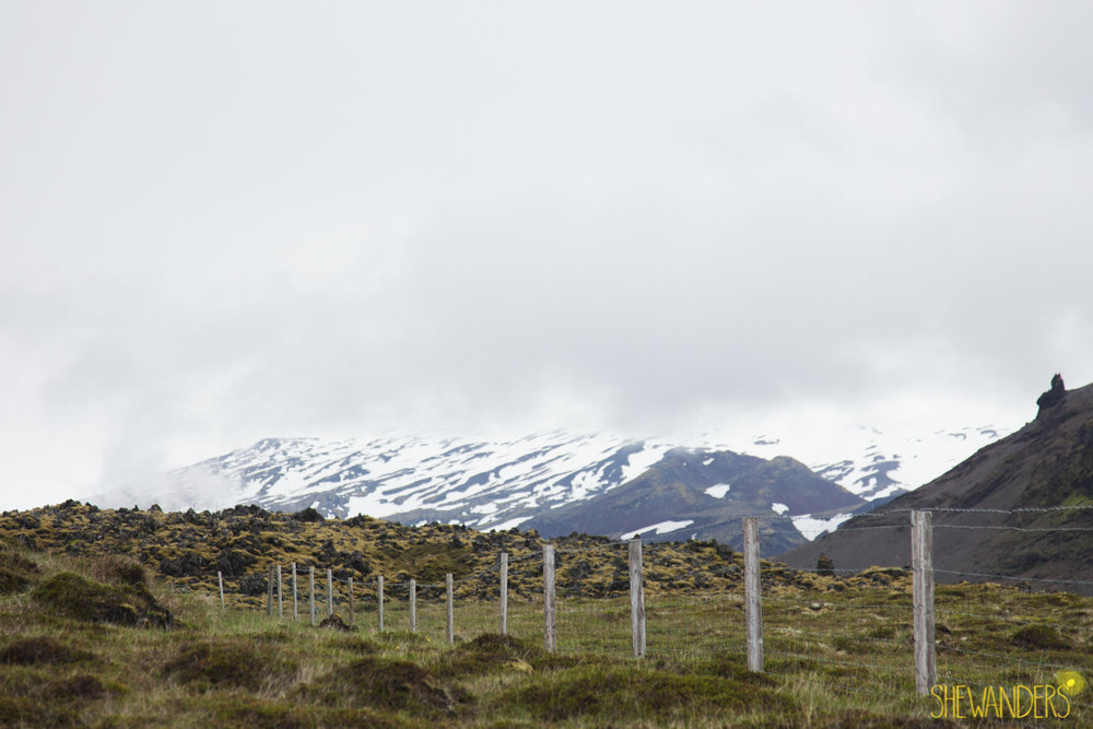 Shewanders.Iceland1Blog1003.jpg1Blog1003.jpg