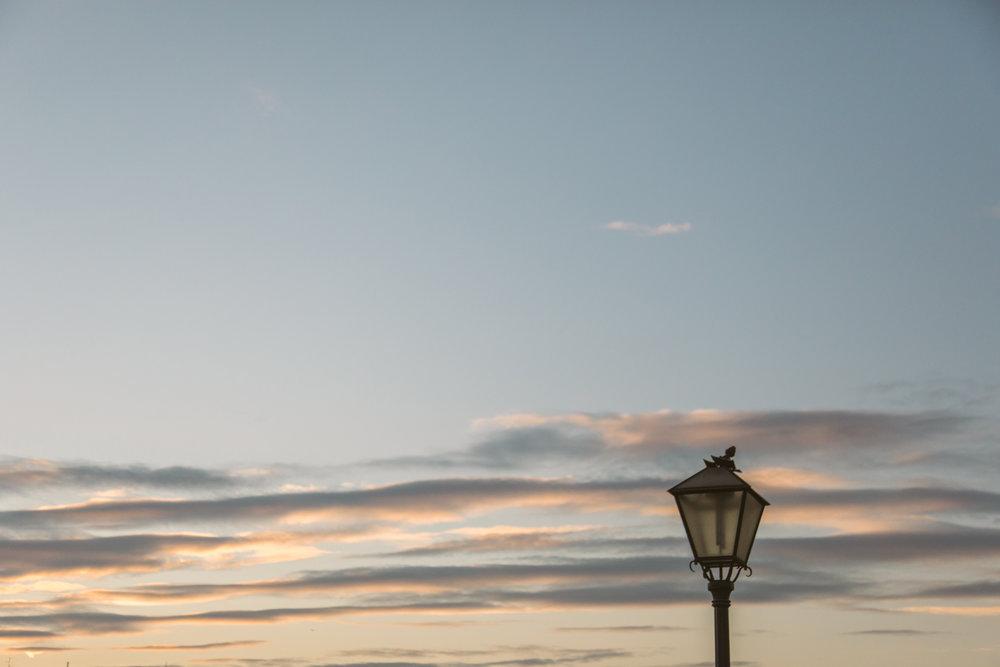 San.Diego.portrait.photographer.Estanicia.vienna.jpg