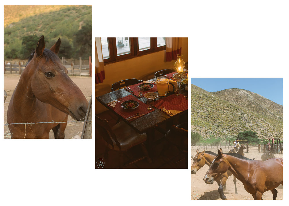 RanchBlog1.jpg