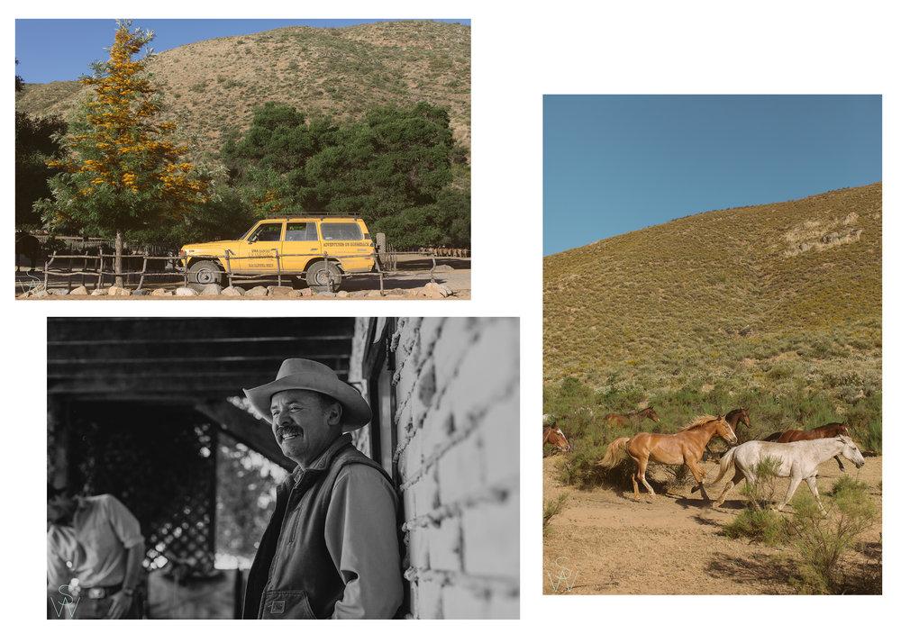 RanchBlog2.jpg