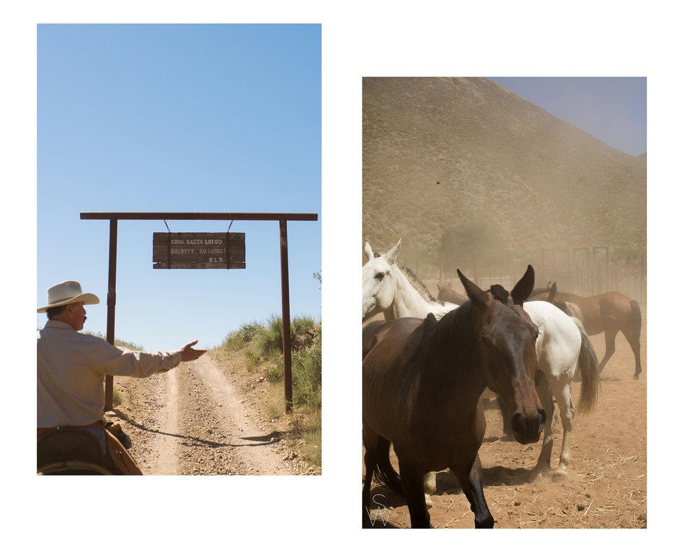 RanchBlog8.jpg