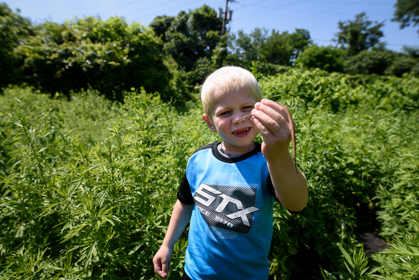 Cameron Gorman, 3, holds a snake he found on a  vacant lot next to his great-grandmother's house on June 10, 2017.