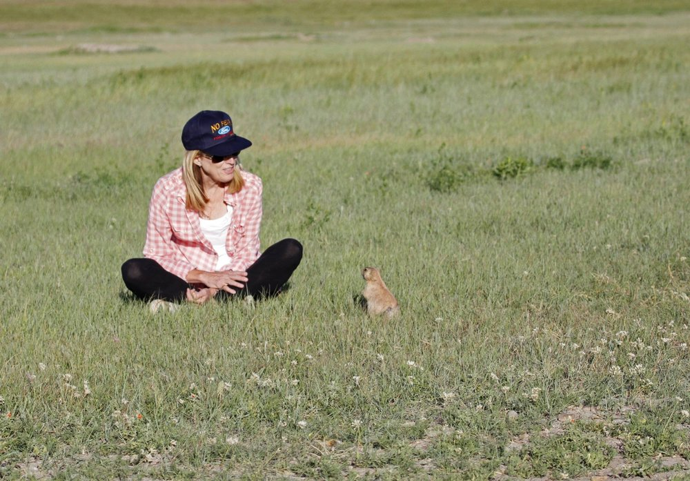 Conversations with prairie dog.