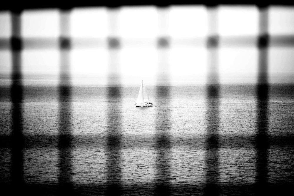 SF-Sail-1.jpg