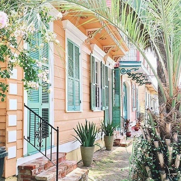 Tropical vibes in New Orleans. 🌴 (pc: @nikkicadestudio)