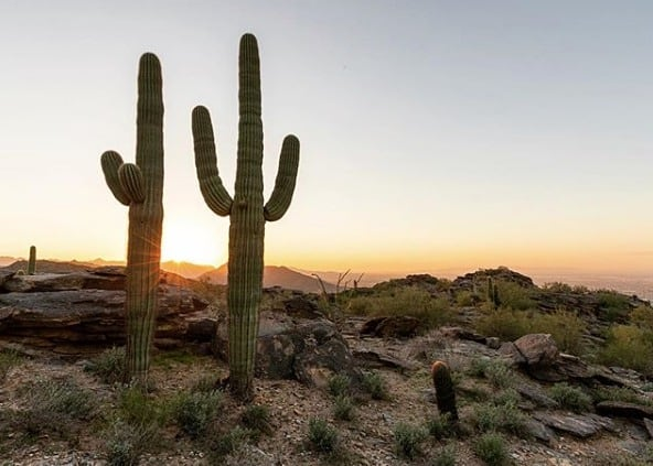 Sunrise views. 🌵 (pc:@jonreid)