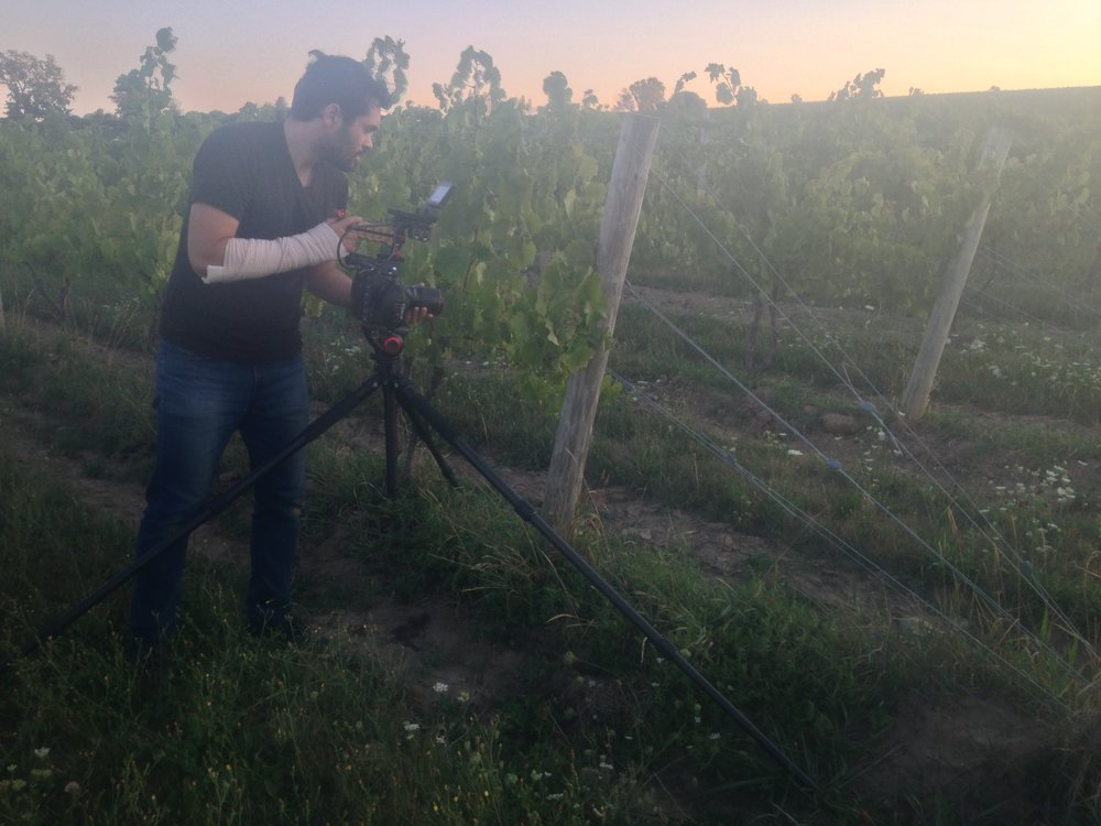 Shooting sunset vineyard footage.