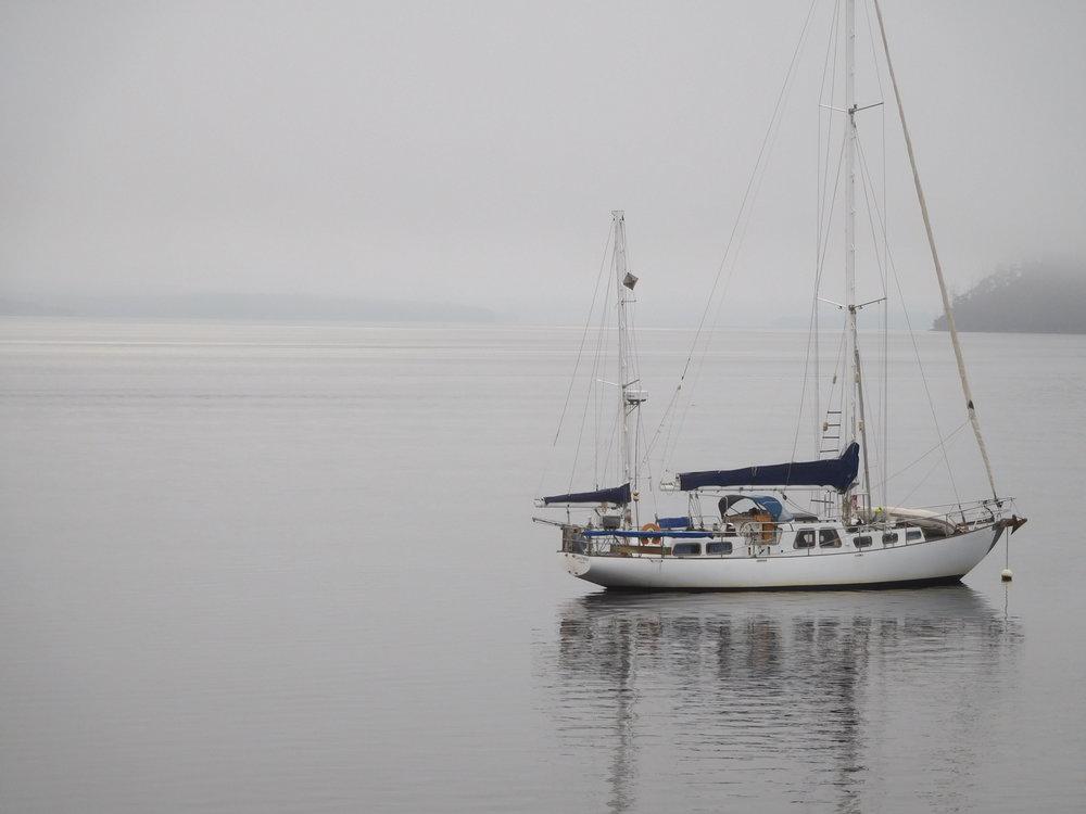 Huon estuary 7.JPG