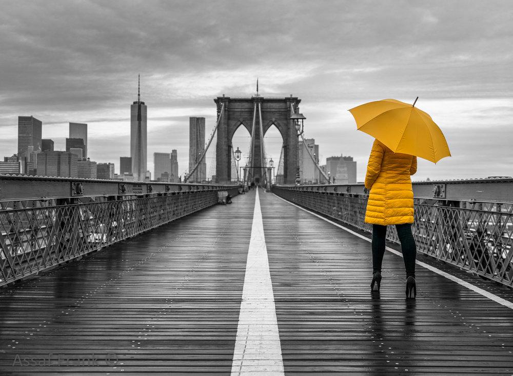 af20131116-new-york-312c03.jpg
