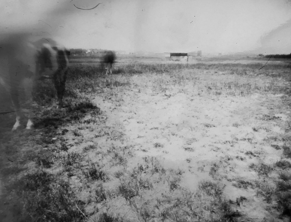 horsepinhole4.jpg