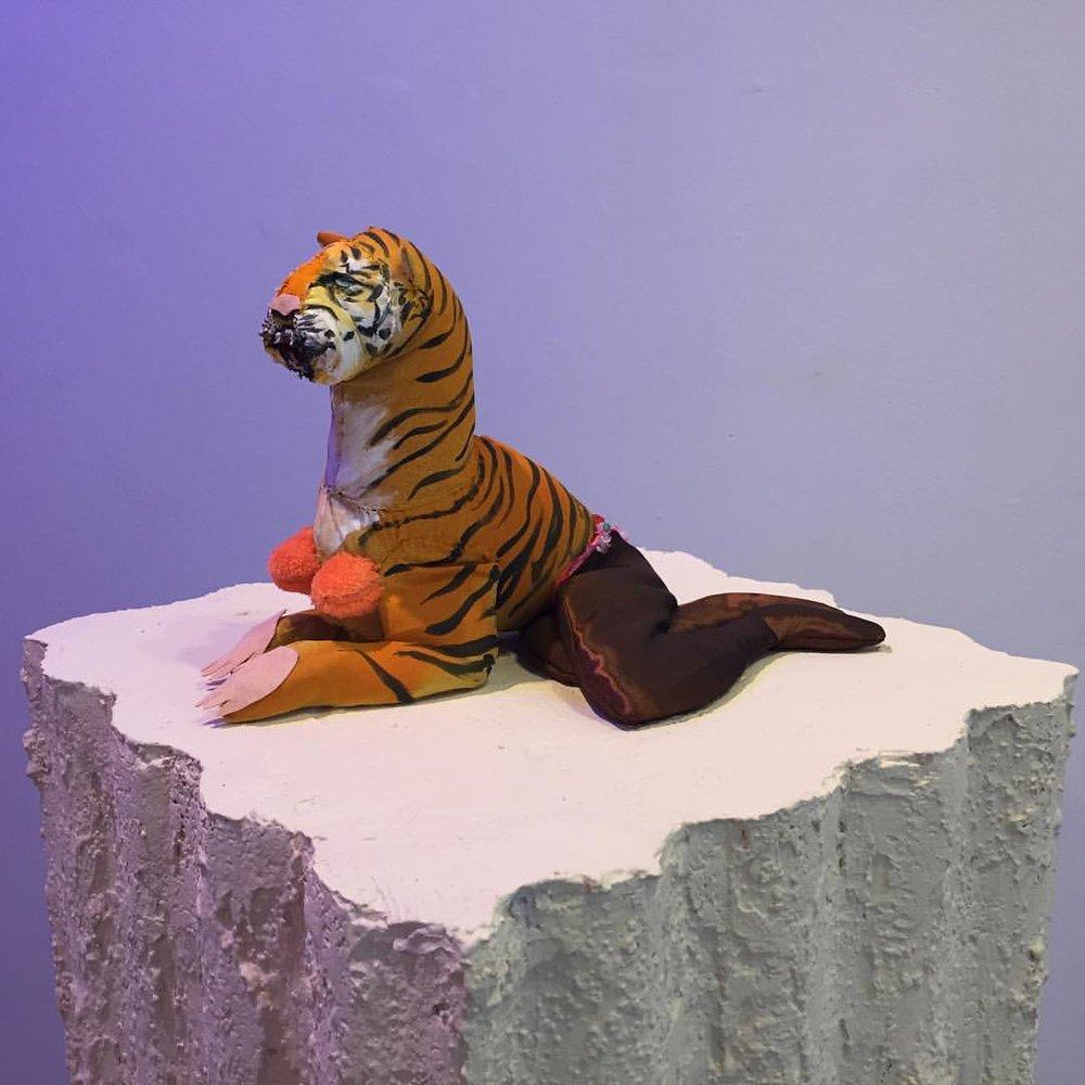 El Tigre y Yo, Maria Guzman Capron