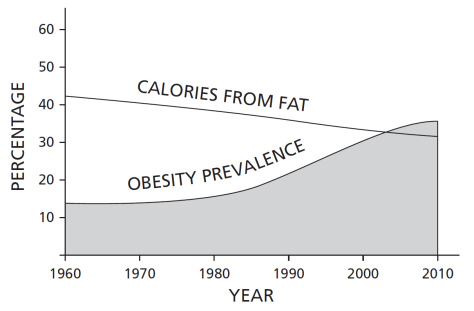 americans fear of fat didn't stop their growing waist line. In fact, the less fat americans eat the more the obesity rates grow
