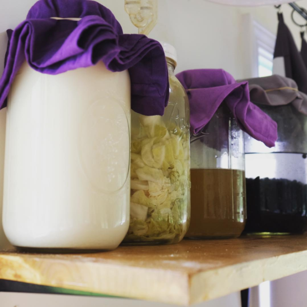 my personal shelf of fermentation: kefir, veggies, kombucha, and beans