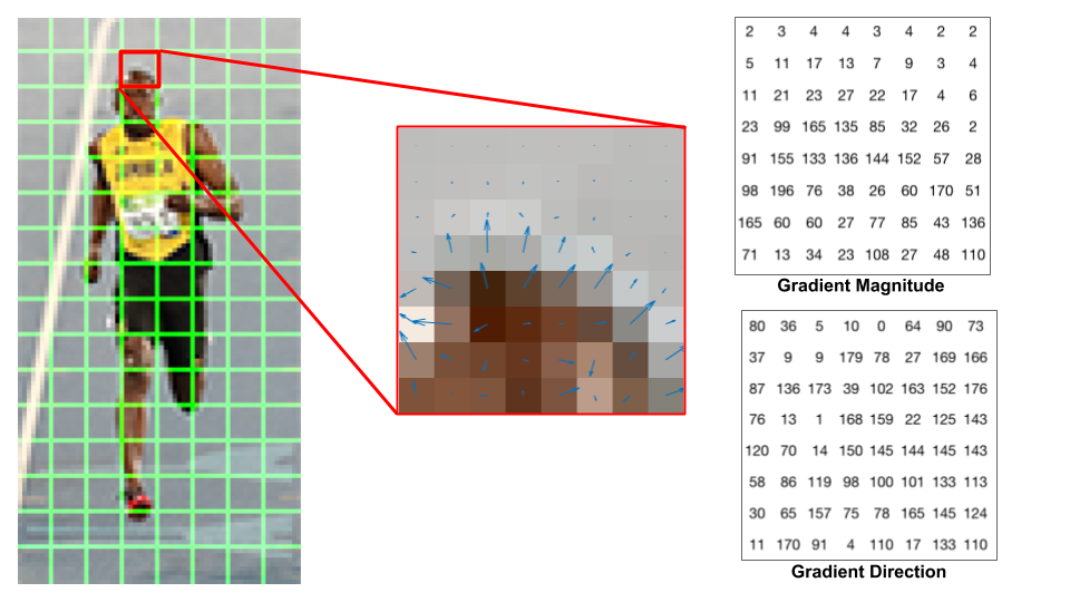 oriented gradients for a picture of a runner. a portion of the image is decomposed into gradients - their magnitude and directions are used for HOG representations in computer vision algorithms (CLICK FOR ORIGINAL SOURCE)