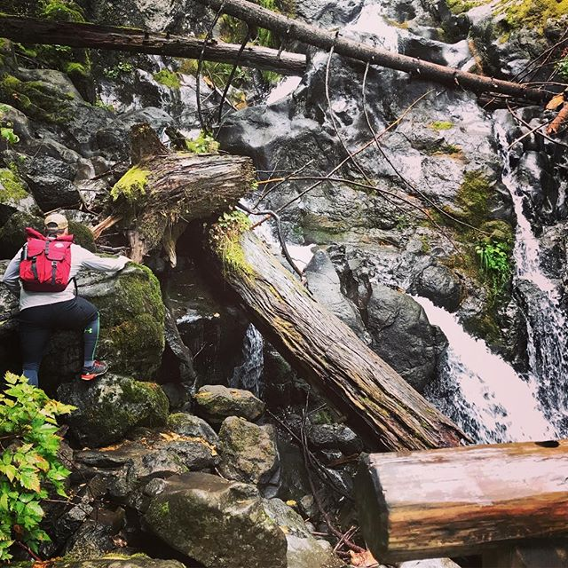 Get outside!  #coldshoulderbags #coldshoulder #coolerbags #backpack #cooler #backpackcooler #beer #beerpack #beercooler #beerlife #cold #beerme #pnw #oregon #washington #evergreen #westcoast #bestcoast #trailmob #beaconrock #waterfall #wherecanyourcoolergo #mountainlife #mountainliving #mountainlifestyle #getoutside #stayfrosty #stayfrostyfriends