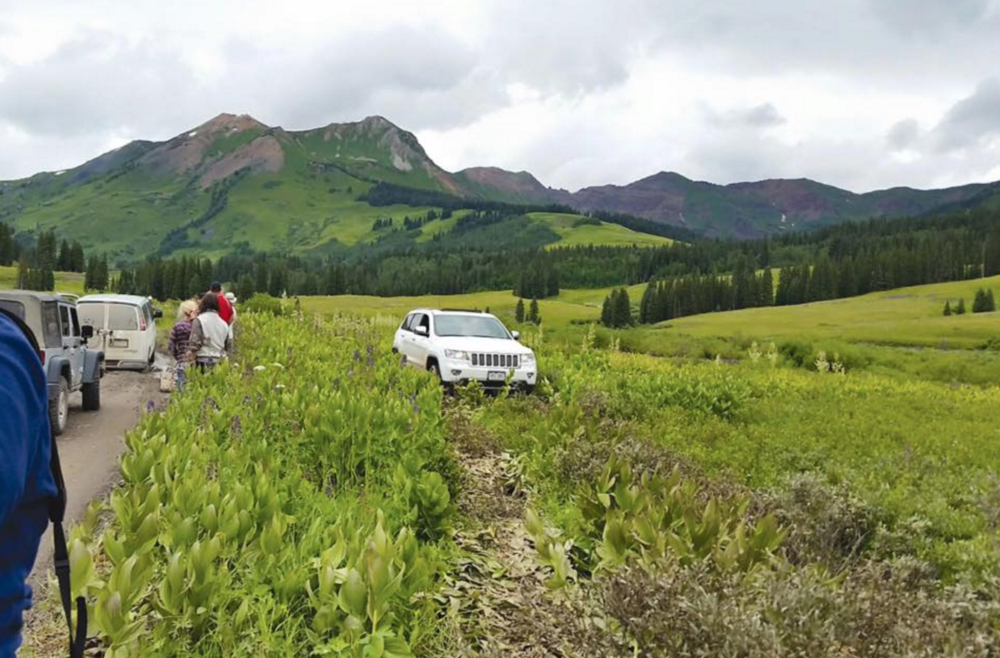 Driving off road can cause permanent damage to native vegetation.