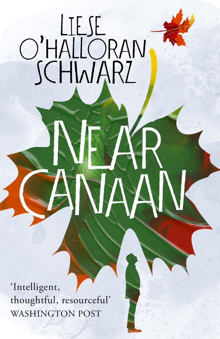 NEAR CANAAN - Liese's first novel is being reprinted November 29, 2018 (Arrow Books) Pre-order now in Kindle or Paperback !