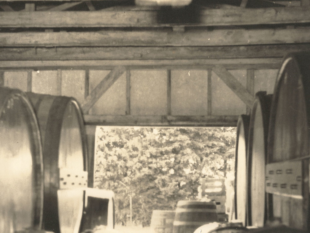Original Mazurans wine cellar 1940s