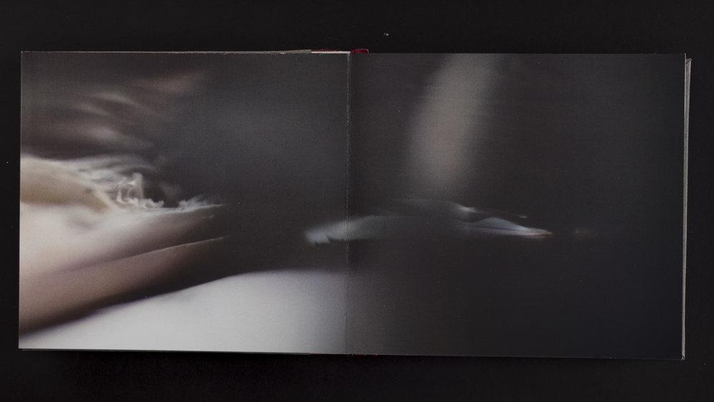 Book_V15.JPG