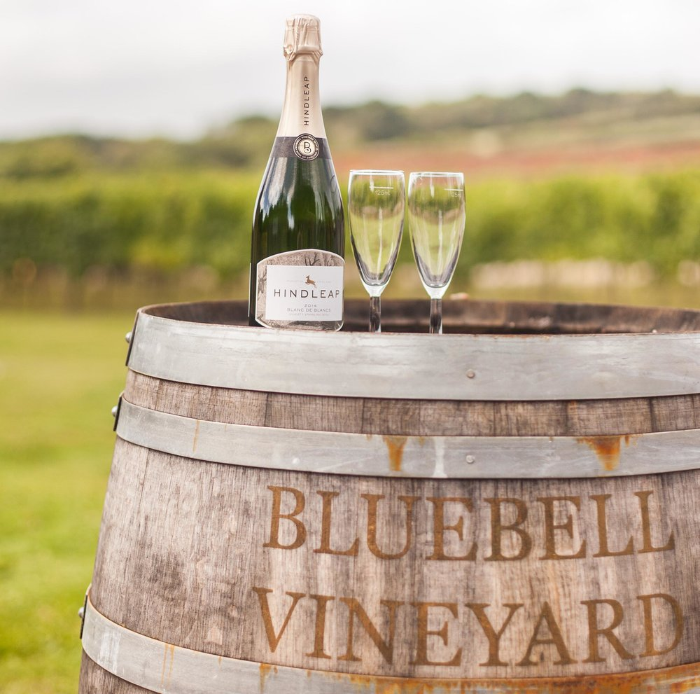 Bluebell Vineyards, credit Christopher Sutherland Photography
