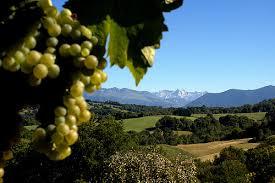 Jurancon valley.jpeg