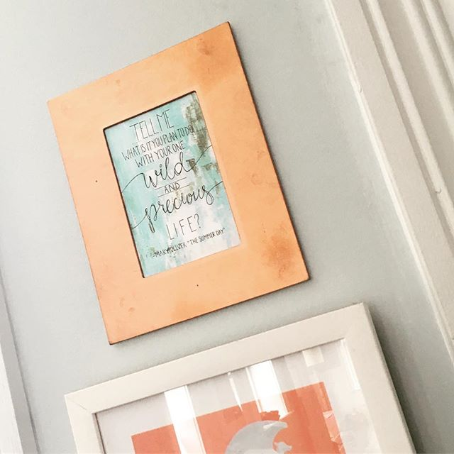 Oh Mary Oliver. Your words are an eternal gift. +++ This Etsy printable featuring her famous line is displayed right by the backdoor to guide one's journey. +++ This wall-safe, rose gold frame ($7) is available through our mobile (camper) shop or via @bigpicproject . 💗frames for change  #maryoliver #focusonwhatmatters #bigpictureframes #wildandprecious