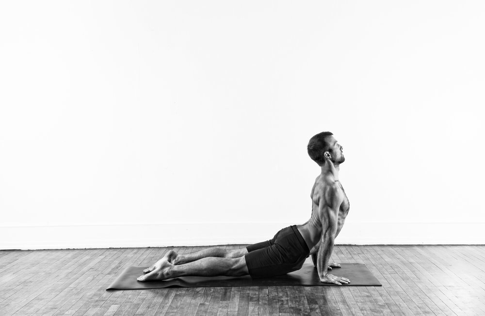 Upward Facing Dog / Urdhva Mukha Svanasana