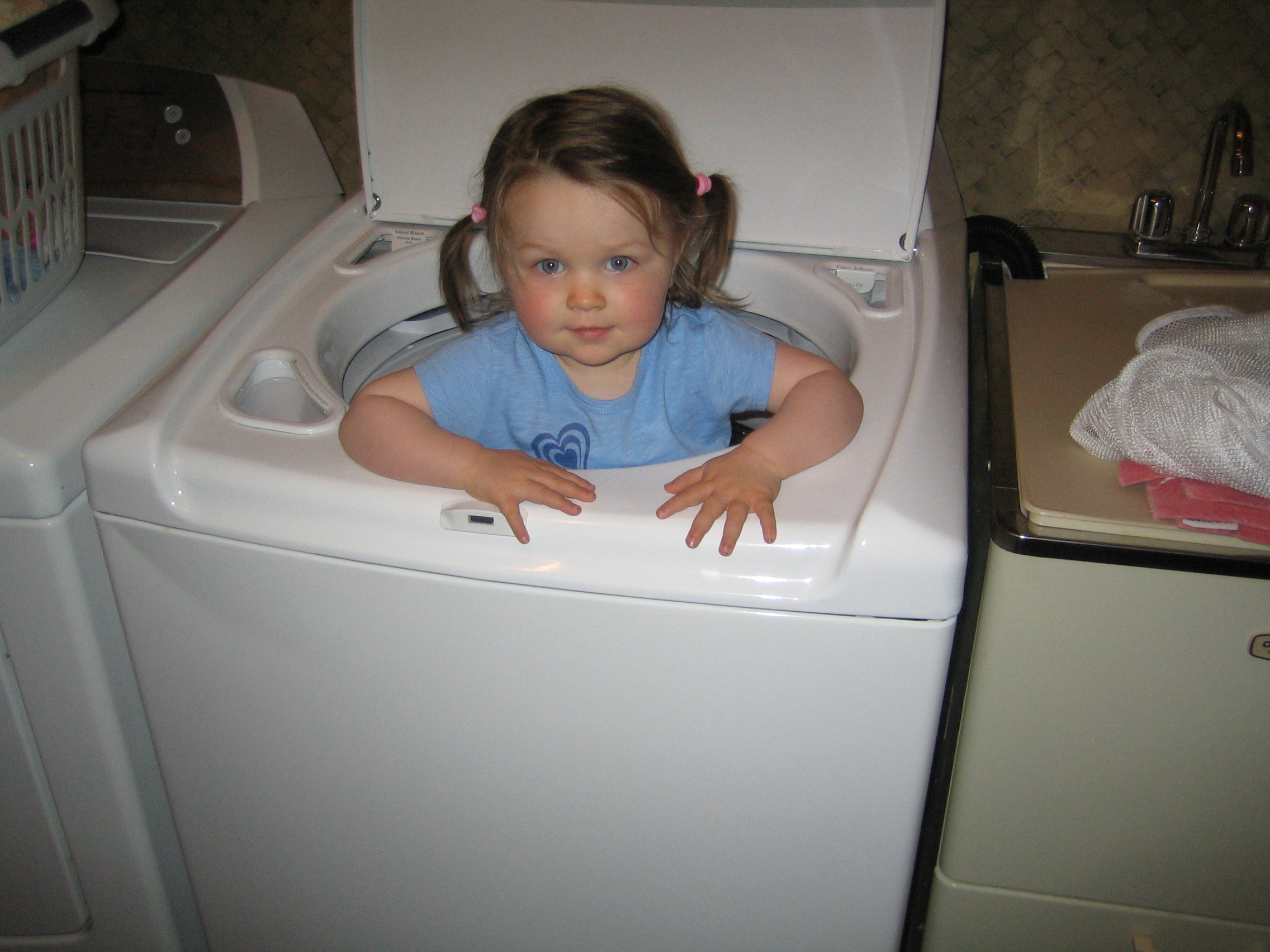 Gigi standing in the washing machine!