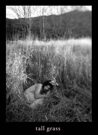 5_grass.jpg